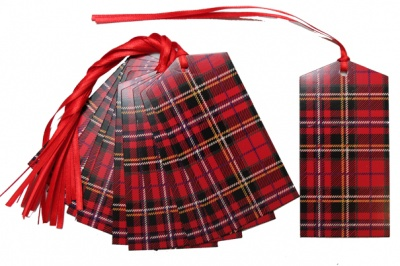 Pack 10 Gift Tags with Ribbon Ties - TARTAN