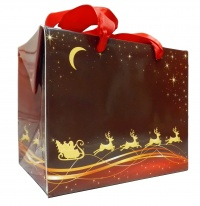 FLAT TOP GIFT BAGS (pack of 10) - small REINDEER